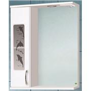 Зеркальный шкаф 60 с подсветкой Панда 60 дельфины
