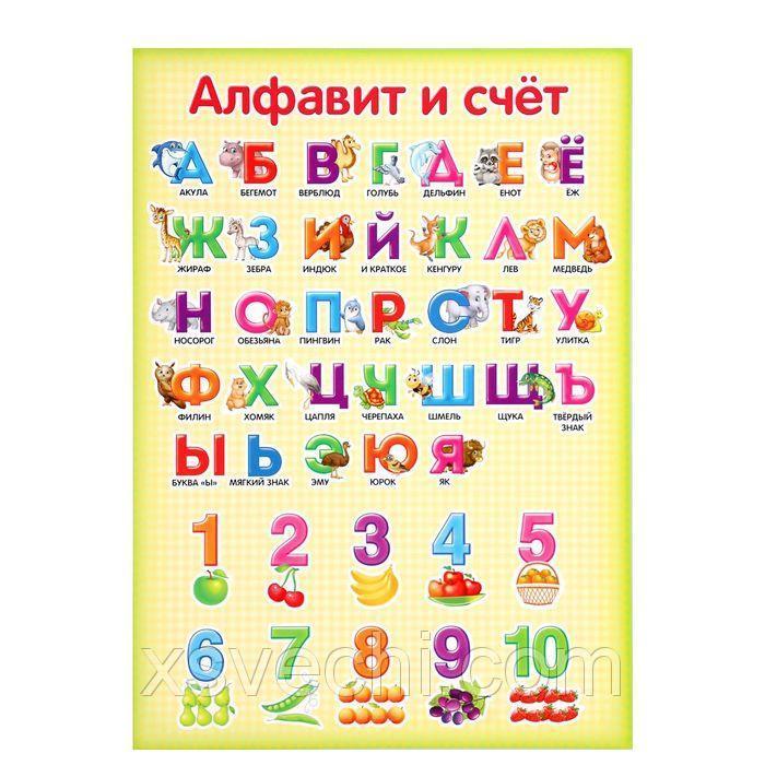 "Обучающий плакат А4 ""Алфавит и счет"""