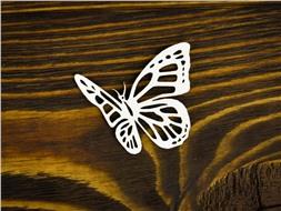 Бабочка 16