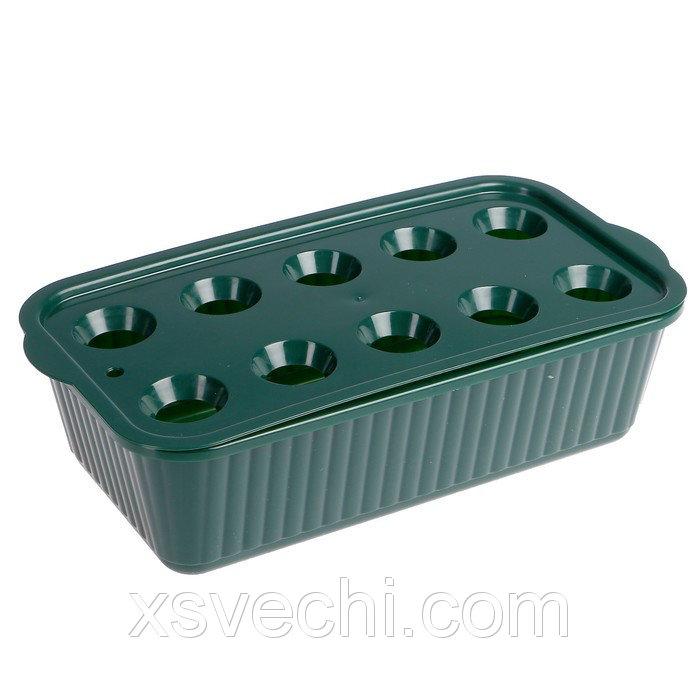 Лоток для выращивания зелёного лука, 10 ячеек, тёмно-зелёный