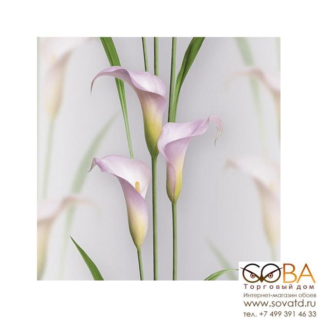 Обои Andrea Rossi Gorgona 54139-9 купить по лучшей цене в интернет магазине стильных обоев Сова ТД. Доставка по Москве, МО и всей России