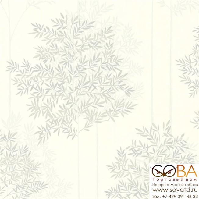 Обои A.S. Creation 36626-2 Colibri купить по лучшей цене в интернет магазине стильных обоев Сова ТД. Доставка по Москве, МО и всей России