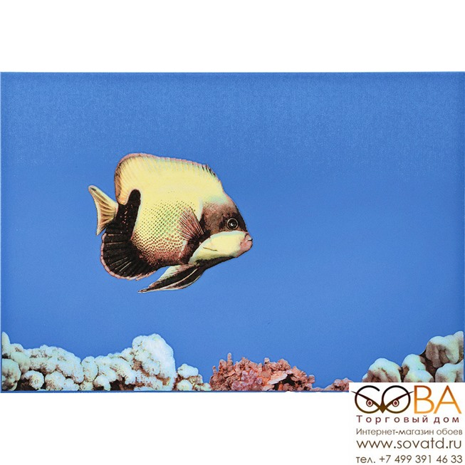 Декор MONO FISH 1  27,5х40 купить по лучшей цене в интернет магазине стильных обоев Сова ТД. Доставка по Москве, МО и всей России